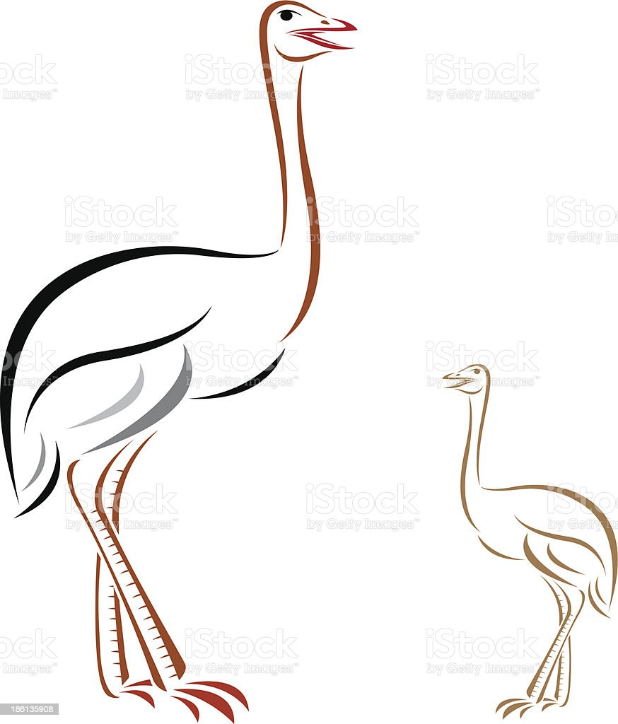 Vector image of an ostrich royalty-free stock vector art