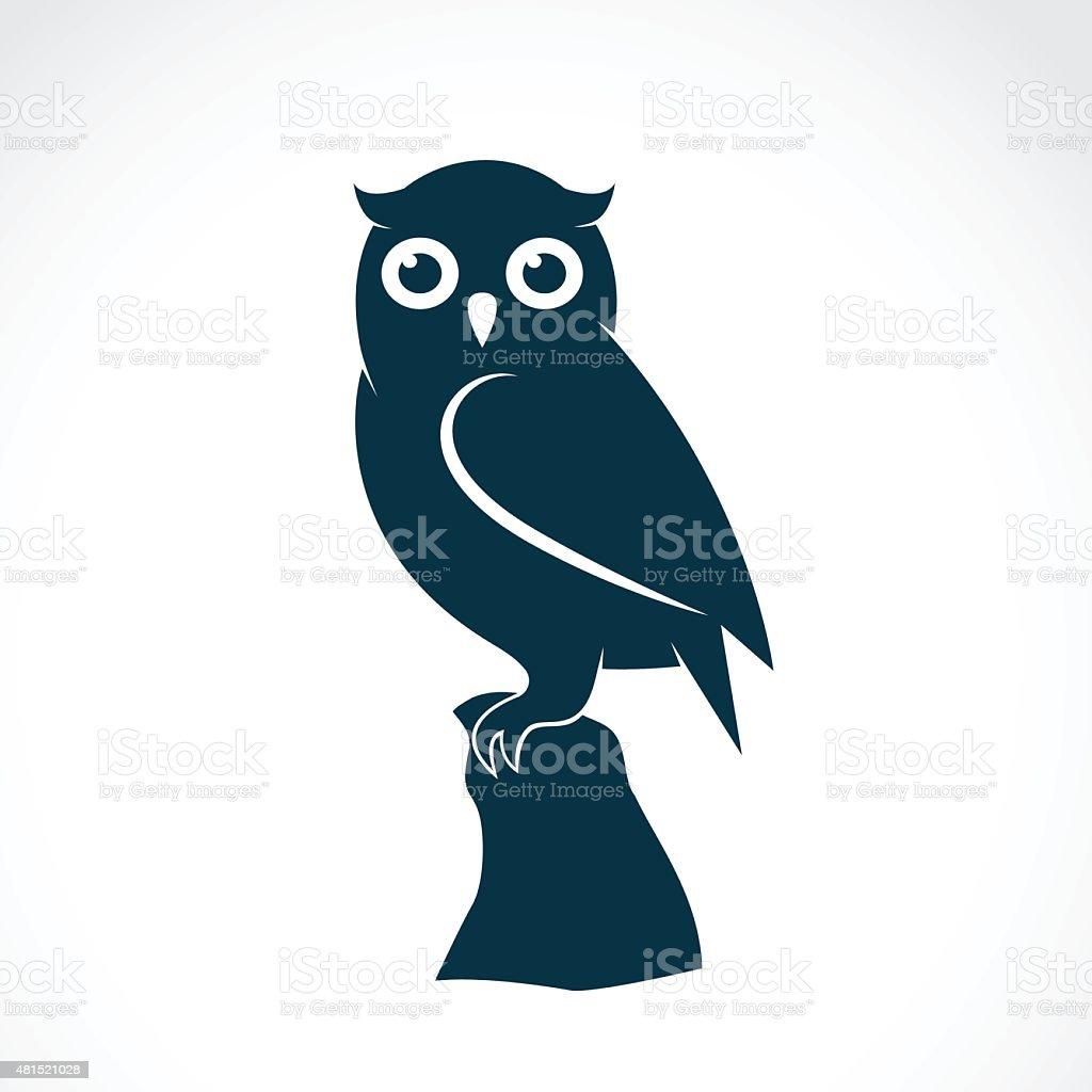 Vector image of an owl on white background vector art illustration