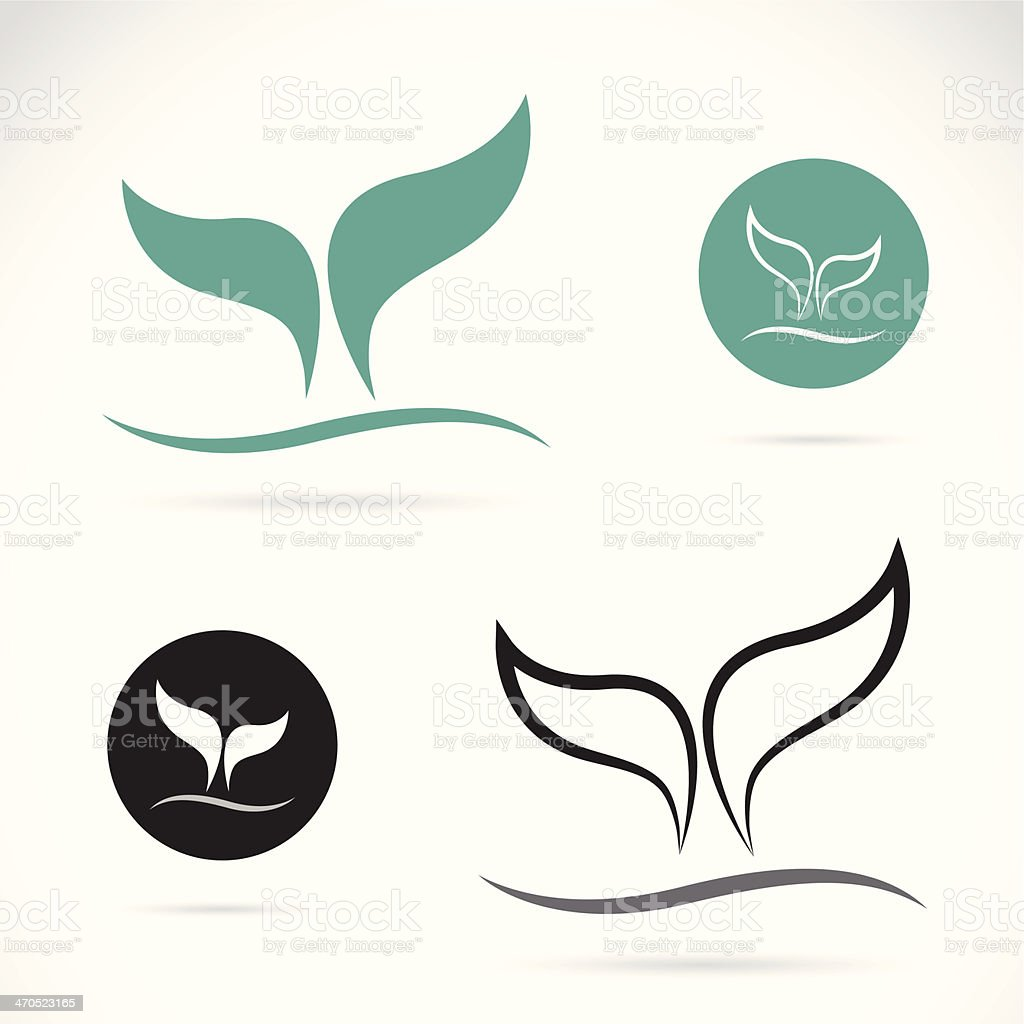 Vector image of an whale tails vector art illustration