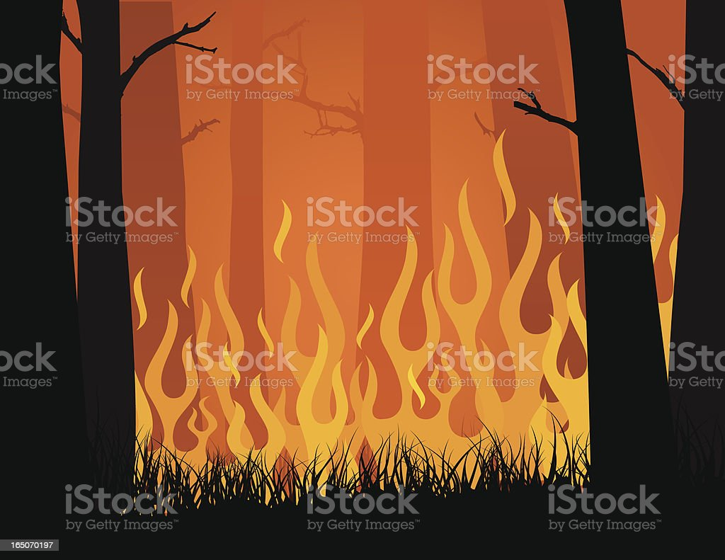 Vector image of forest fire blazing in yellows and oranges vector art illustration
