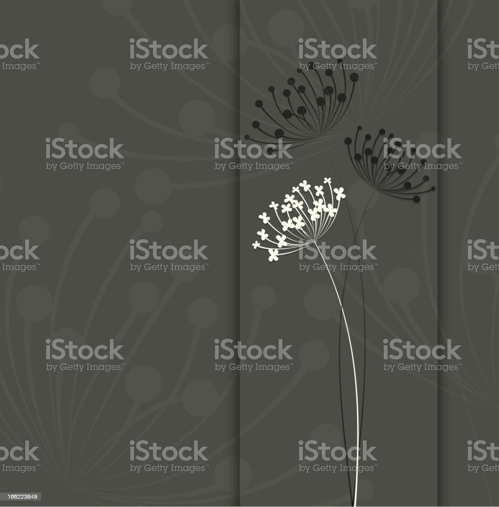 Vector image of white and black flowers with gray background royalty-free stock vector art