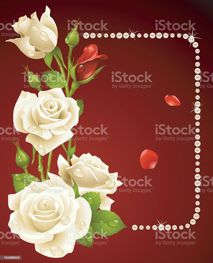 Vector image of white and red roses and pearl frame royalty-free stock vector art