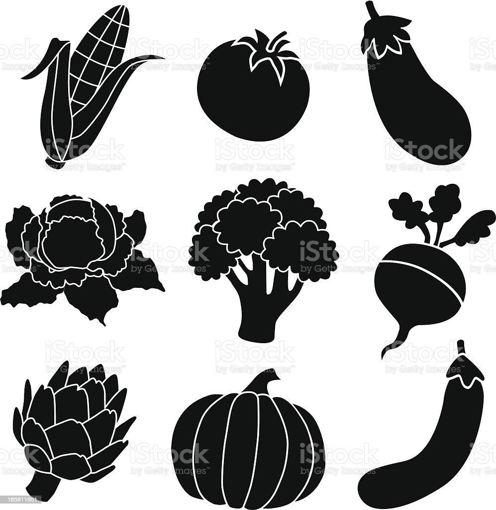 Vector images of different vegetables vector art illustration