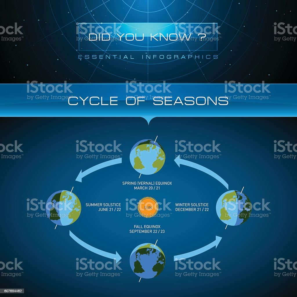 Vector Infographic - Cycle of Seasons vector art illustration