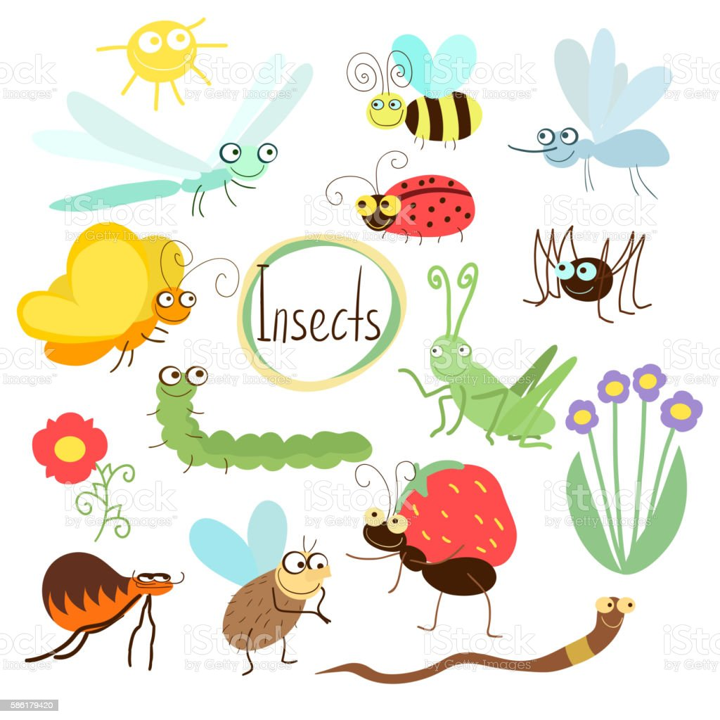 Vector insect set in cartoon style vector art illustration