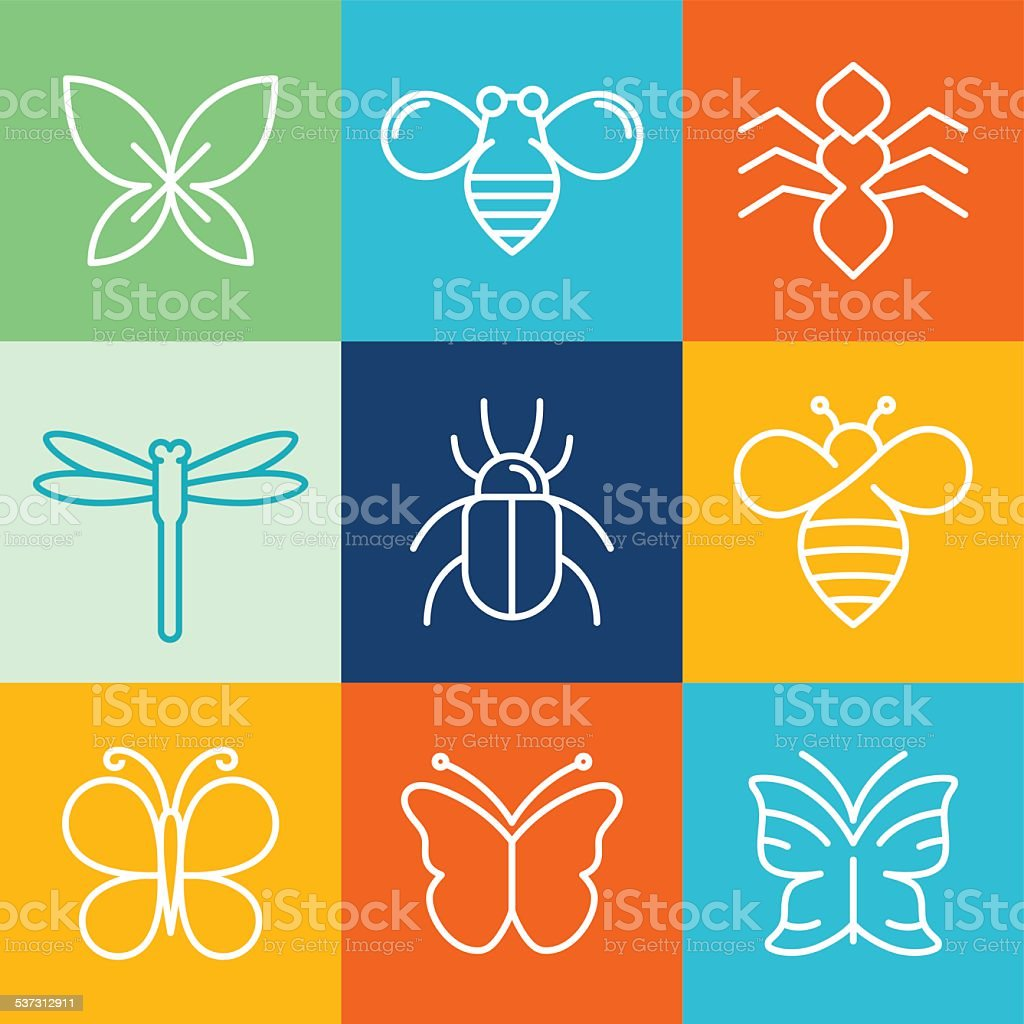 Vector insects and bugs vector art illustration