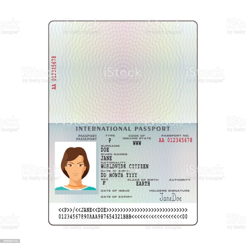Vector international passport template with sample personal data page vector art illustration