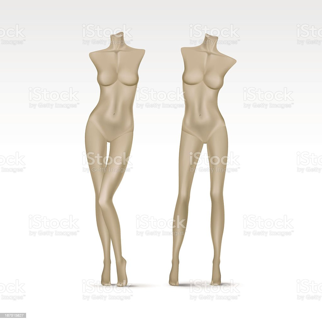 Vector Isolated Female Mannequin royalty-free stock vector art