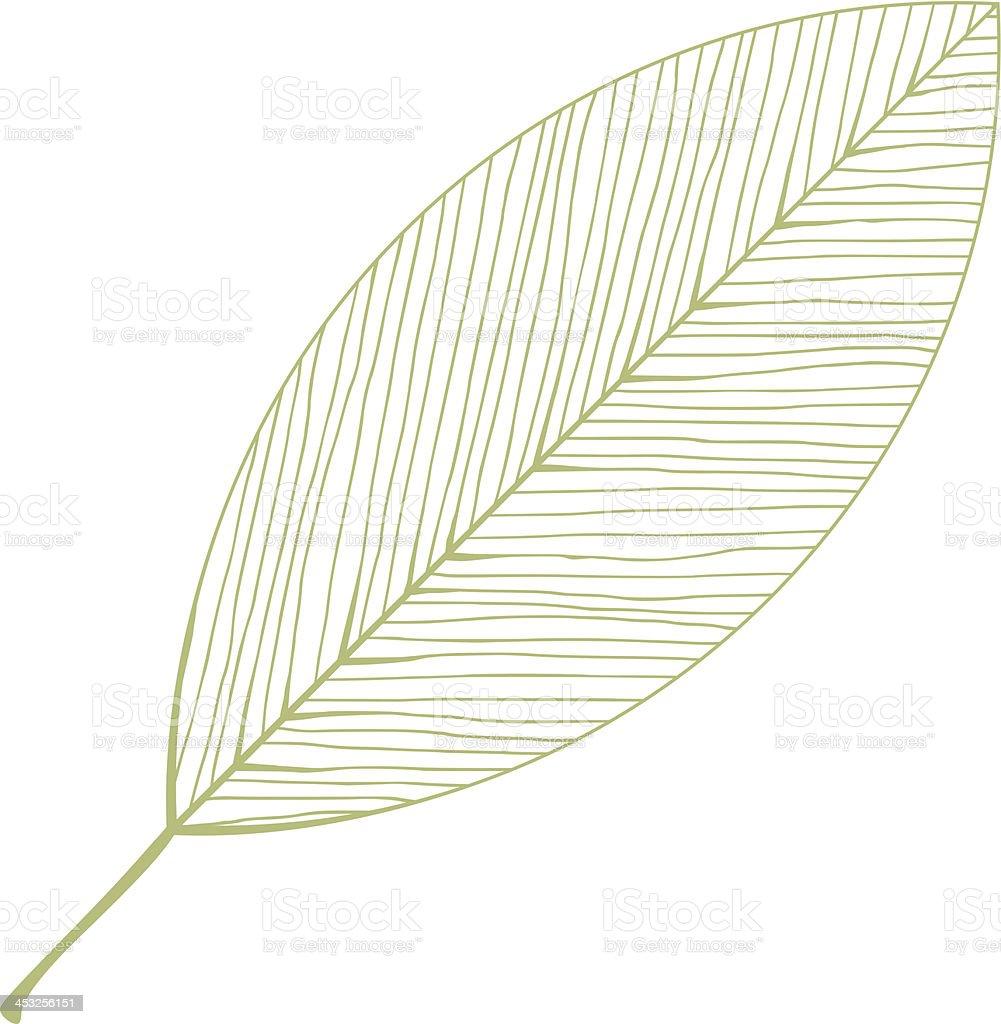 vector isolated leaf illustration vector art illustration