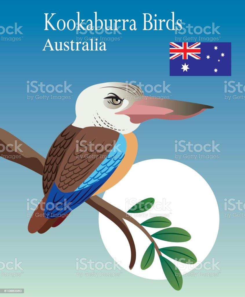 Vector Kookaburra Birds vector art illustration