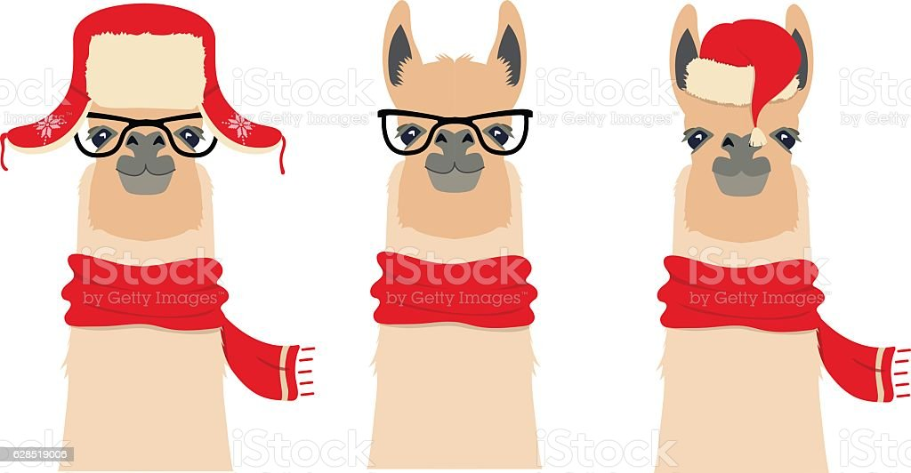 Vector Lama Head set in winter, christmas clothing and glasses vector art illustration