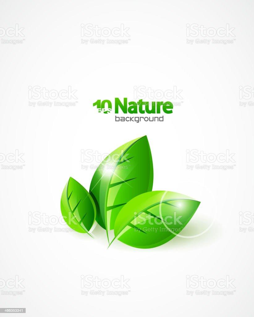Vector leaves for nature design template vector art illustration