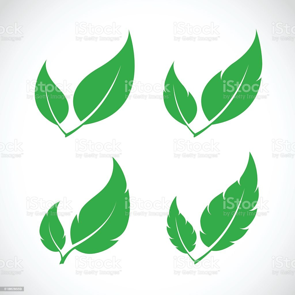 Vector leaves icon set vector art illustration