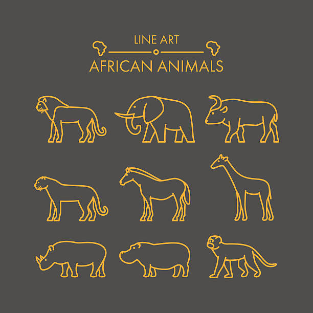Line Drawings Of African Animals : Elephants clip art vector images illustrations istock