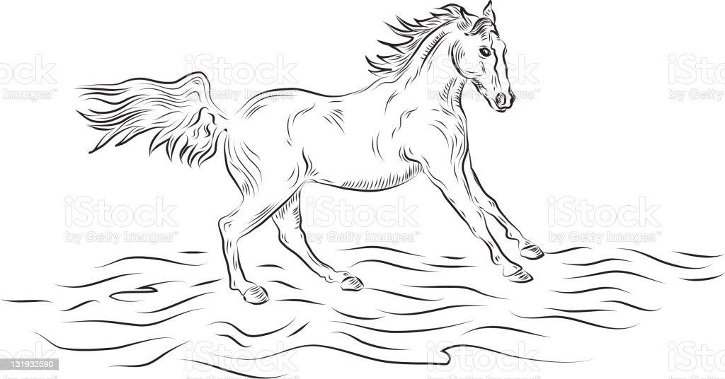 Vector line drawing of horse running vector art illustration