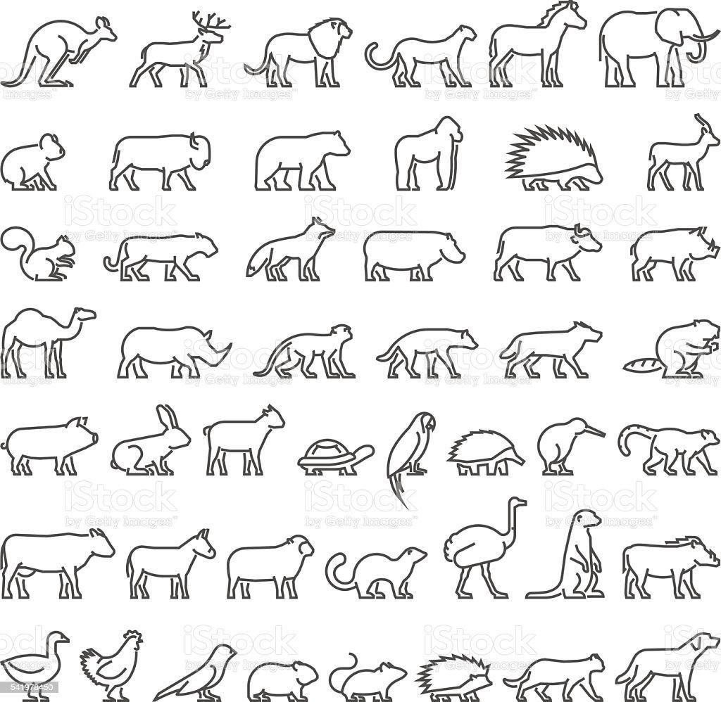 Line Drawing Of Domestic Animals : ベクトルラインシルエットの国内ファームと野生動物 のイラスト素材 istock