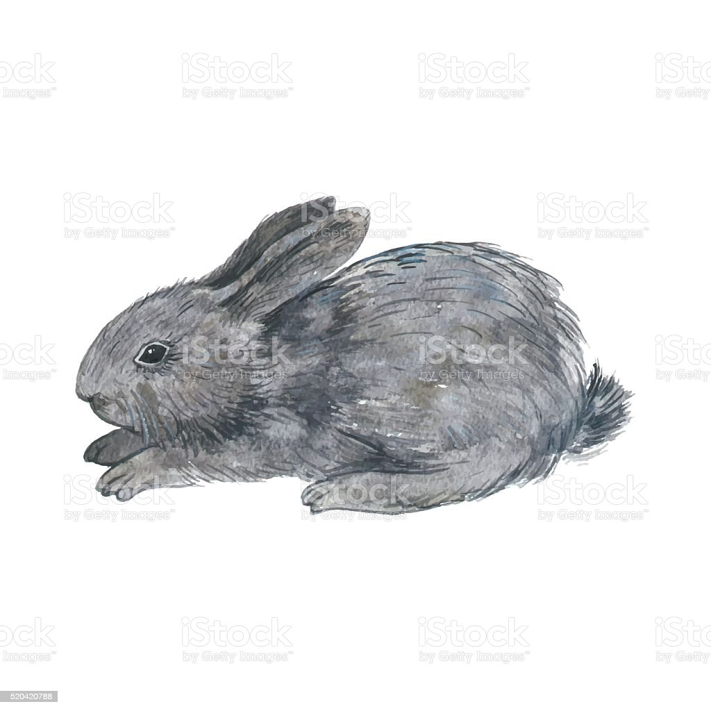 vector little fluffy bunny vector art illustration