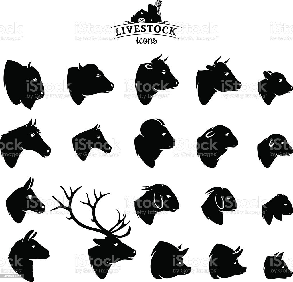 Vector Livestock Icons Isolated on White vector art illustration