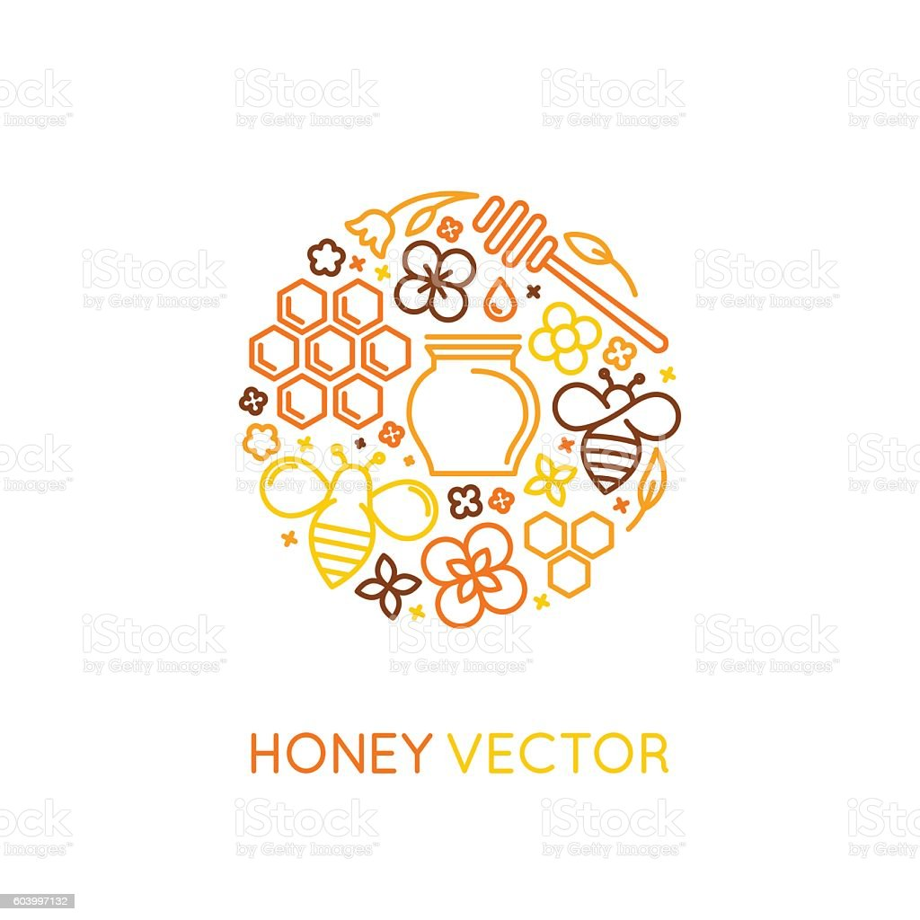 Vector logo and packaging design templates in trendy linear styl vector art illustration