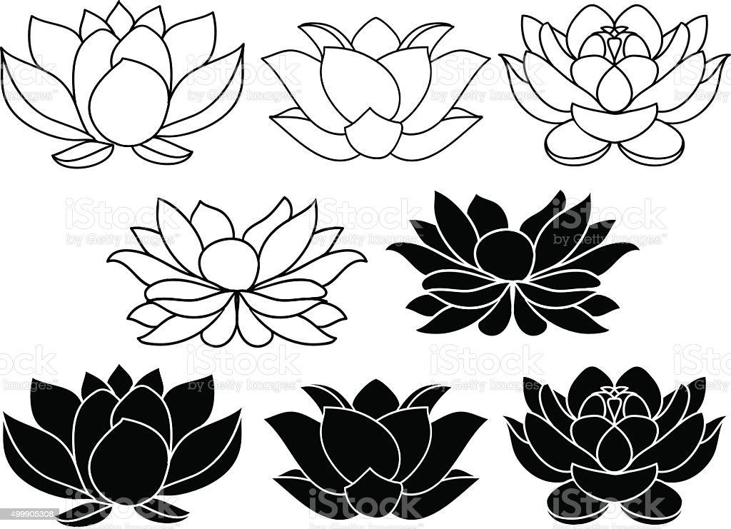 Vector lotus flowers vector art illustration