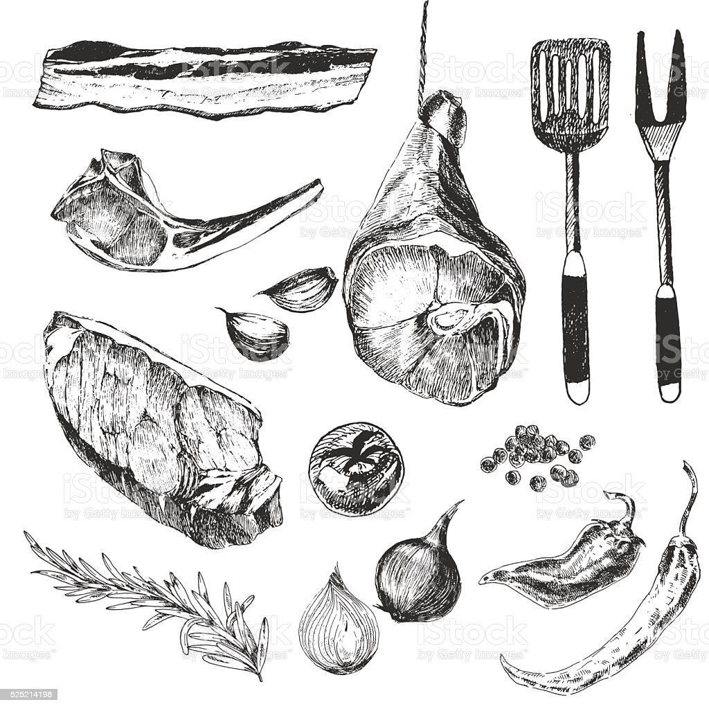 vector meat steak sketch drawing designer template. grilled lamb rib vector art illustration