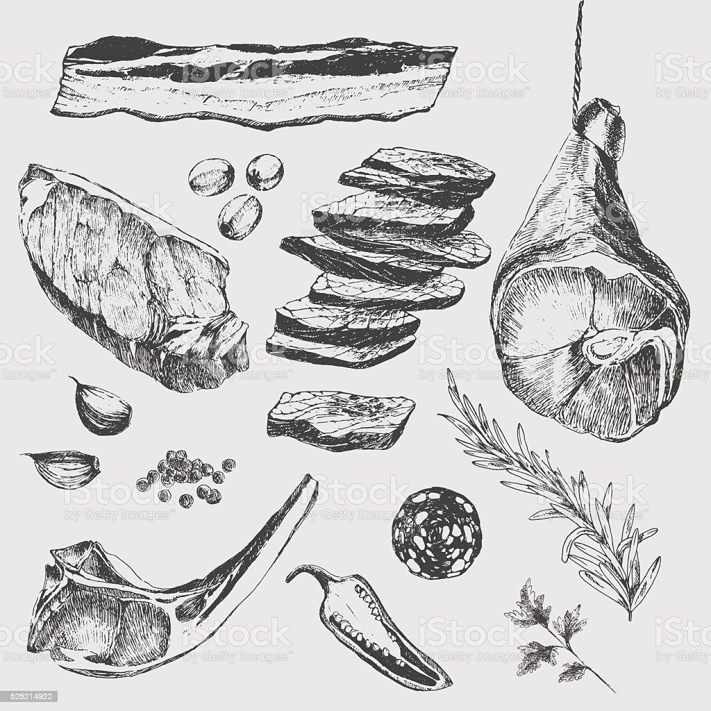 vector meat steak sketch drawing designer template. lamb rib, parma vector art illustration