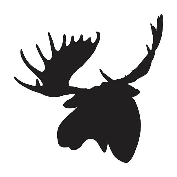 Elk Clip Art, Vector Images & Illustrations - iStock