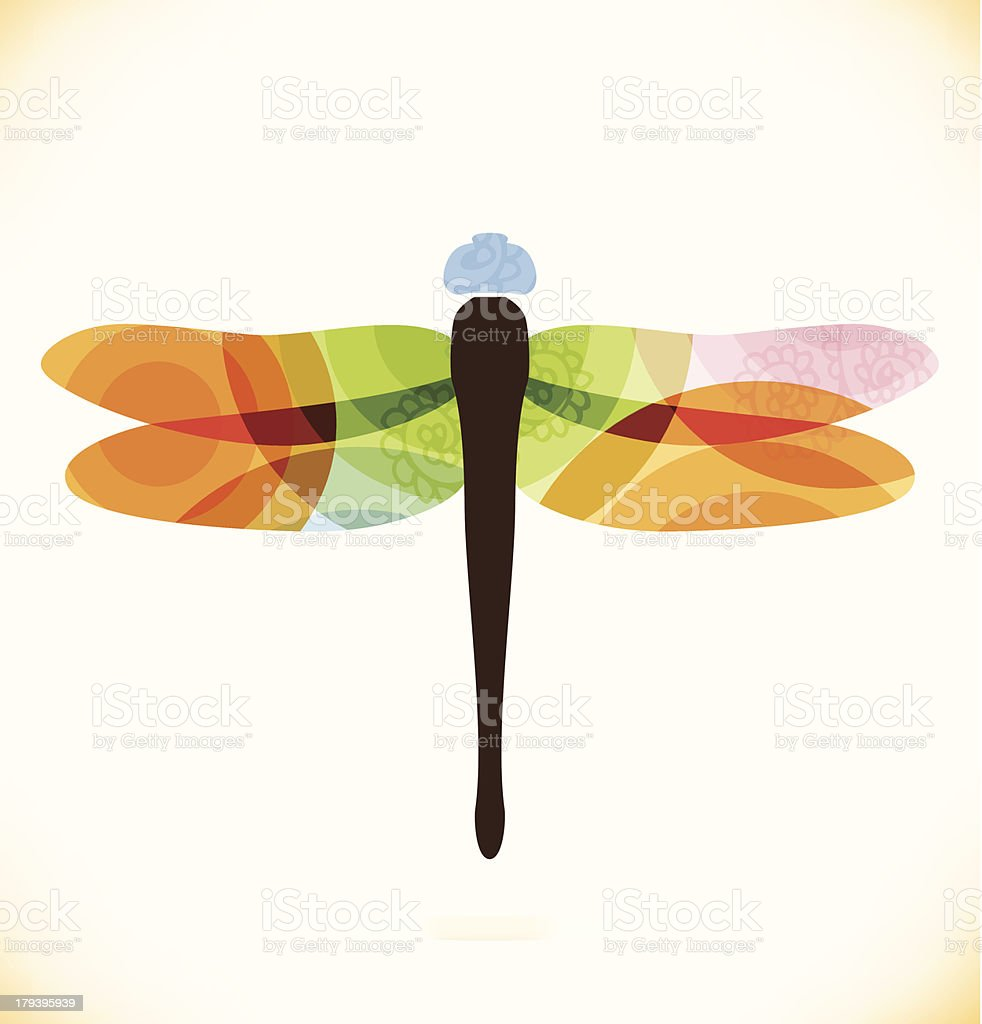 Vector multicolor isolated dragonfly  Beauty insect vector art illustration