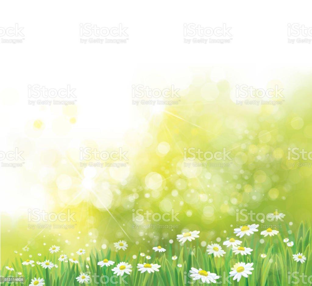 Vector nature background. vector art illustration