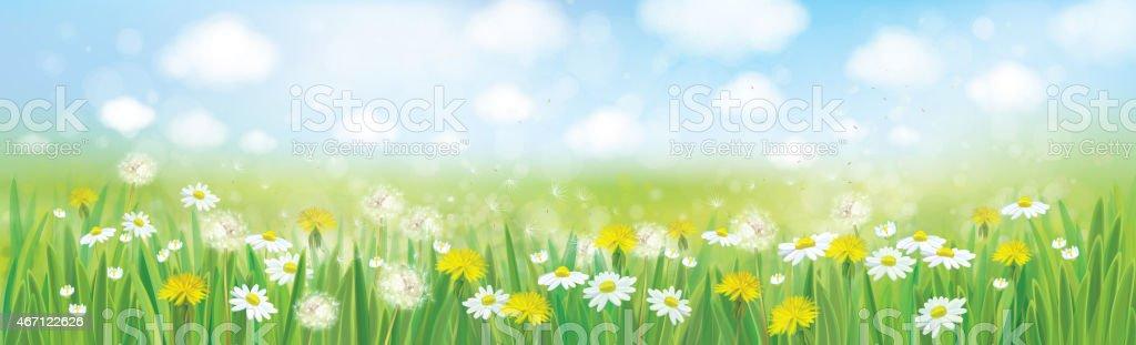Vector nature  spring background. vector art illustration