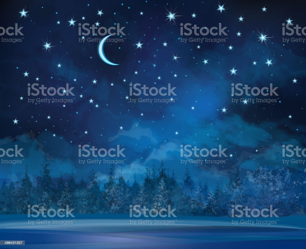 Vector night winter scene, sky and forest background. vector art illustration