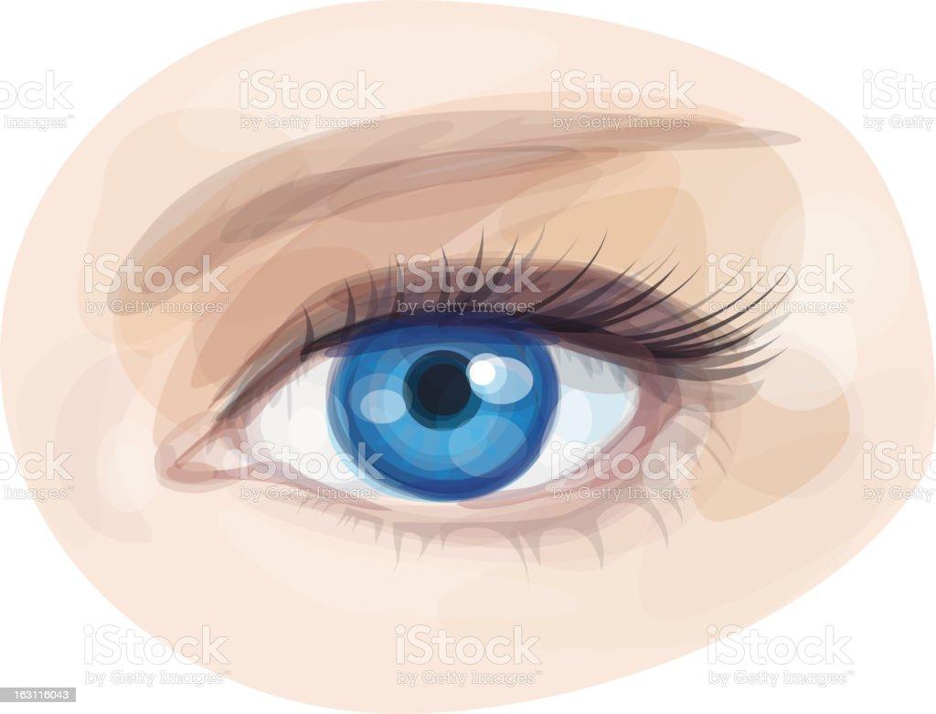 Vector of beautiful blue woman's eye. vector art illustration