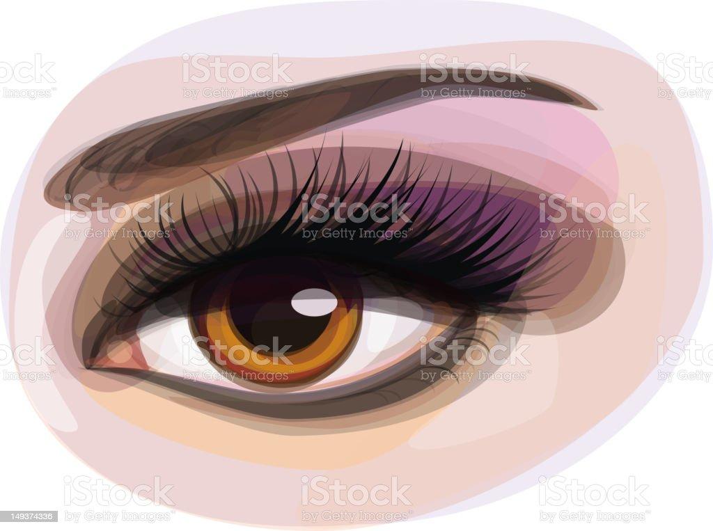 Vector of beautiful brown woman's eye. royalty-free stock vector art