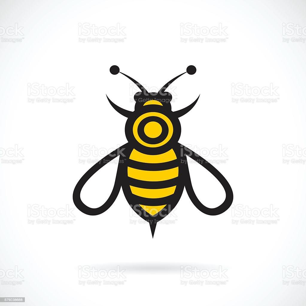 Vector of bee design. vector art illustration