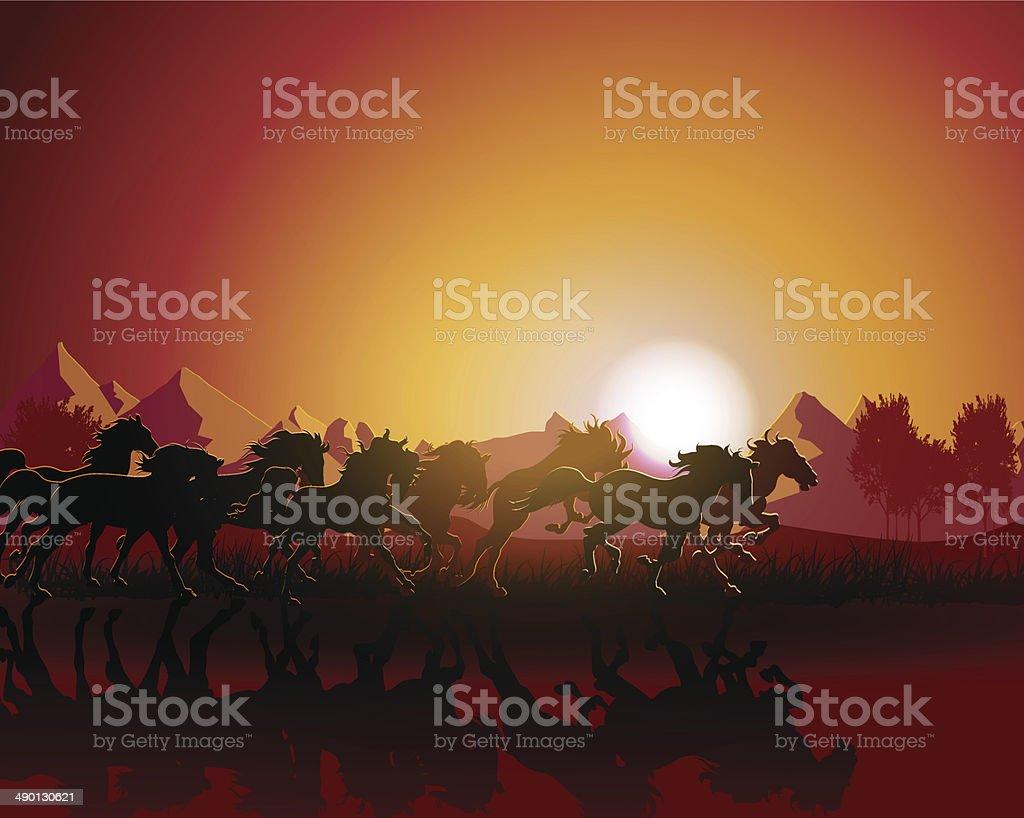 Vector of horse silhouette vector art illustration