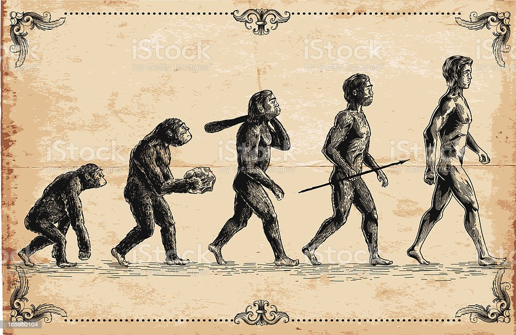 Vector of human evolution concept vector art illustration