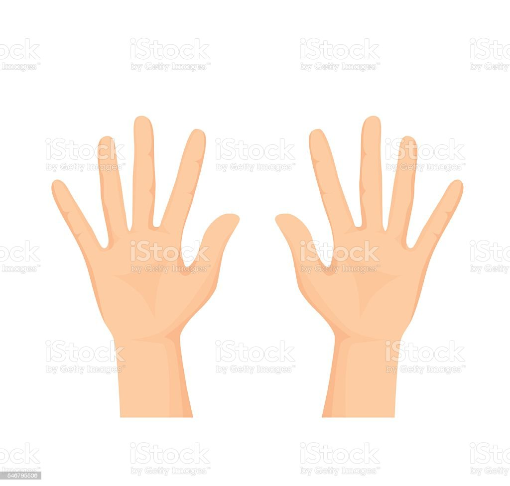 Vector of Opened palm of the hand vector art illustration
