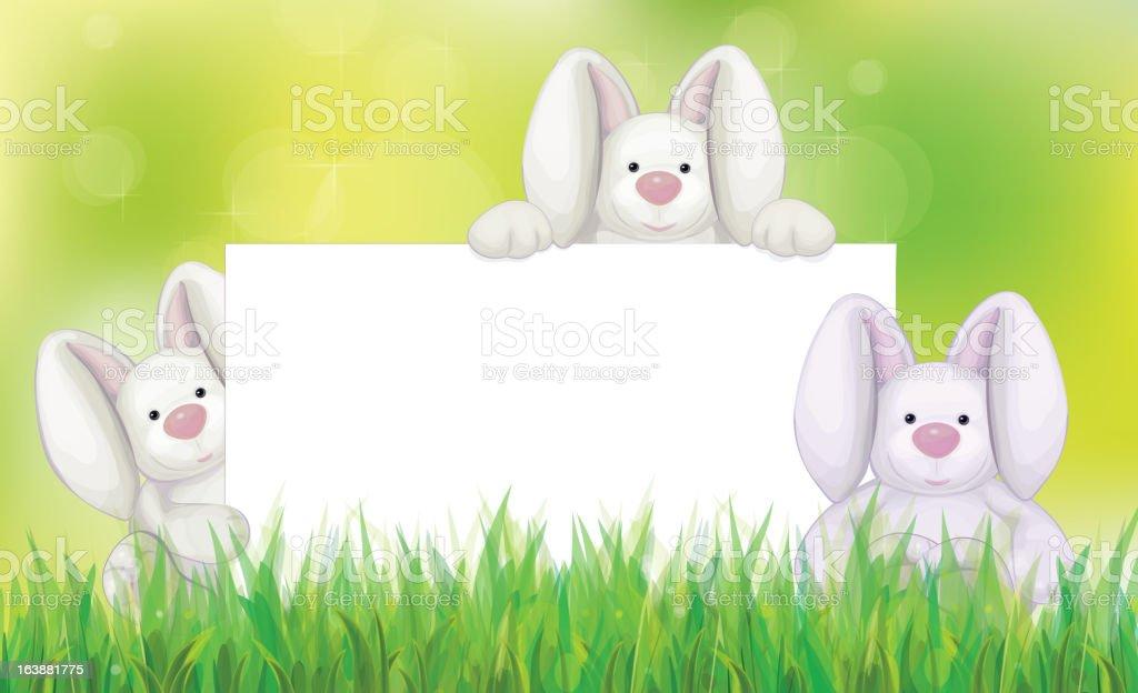 Vector of rabbits holding white blank for Easter's design royalty-free stock vector art