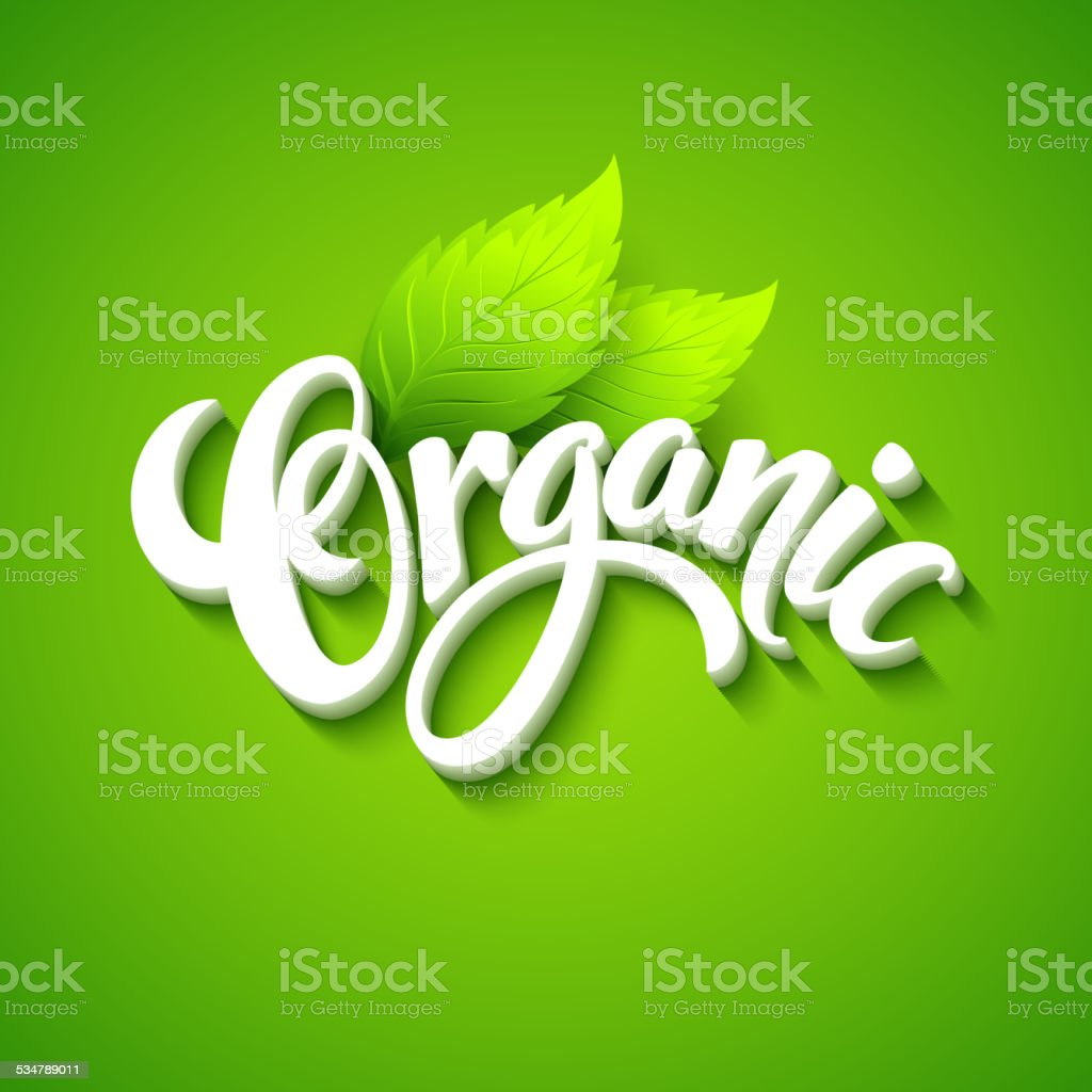Vector organic background. Hand  drawn lettering vector art illustration