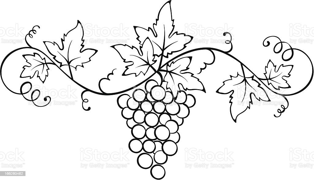 Vector ornament with the vine vector art illustration