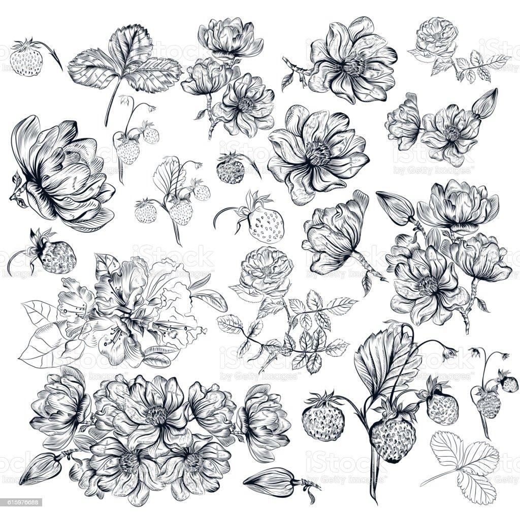 Vector pack of engraved high detailed flowers for design vector art illustration