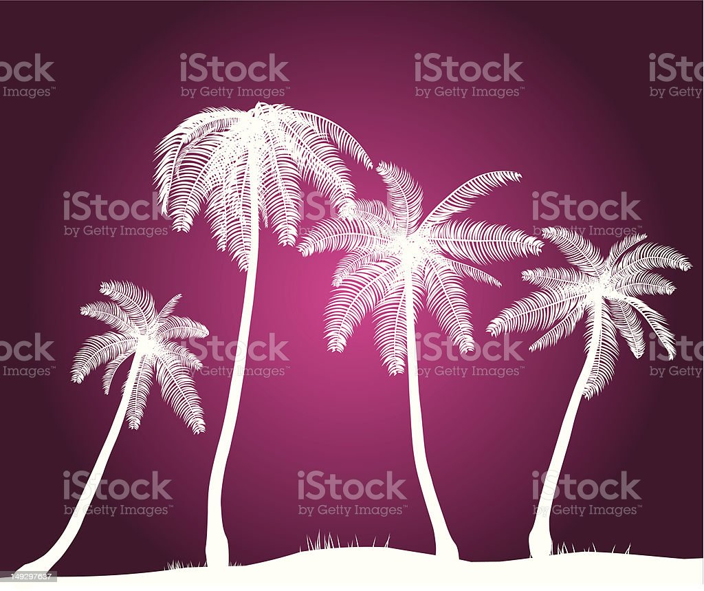 Vector Palm Trees royalty-free stock vector art
