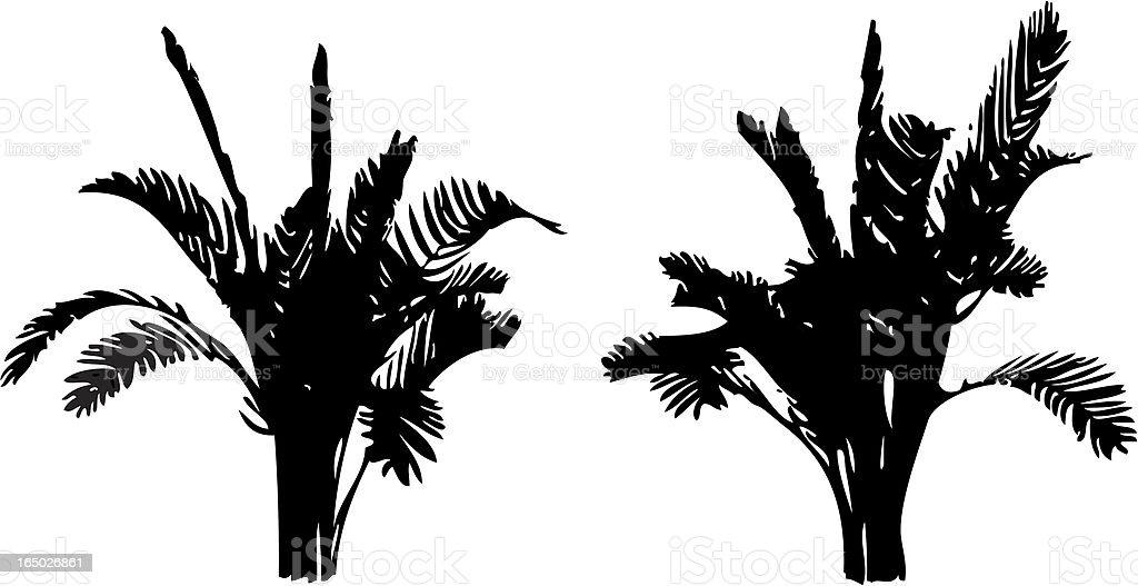 Vector palnt silhouette vector art illustration