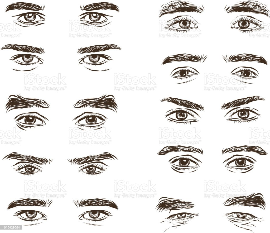 Vector part of the male person s eyes and eyebrows. vector art illustration