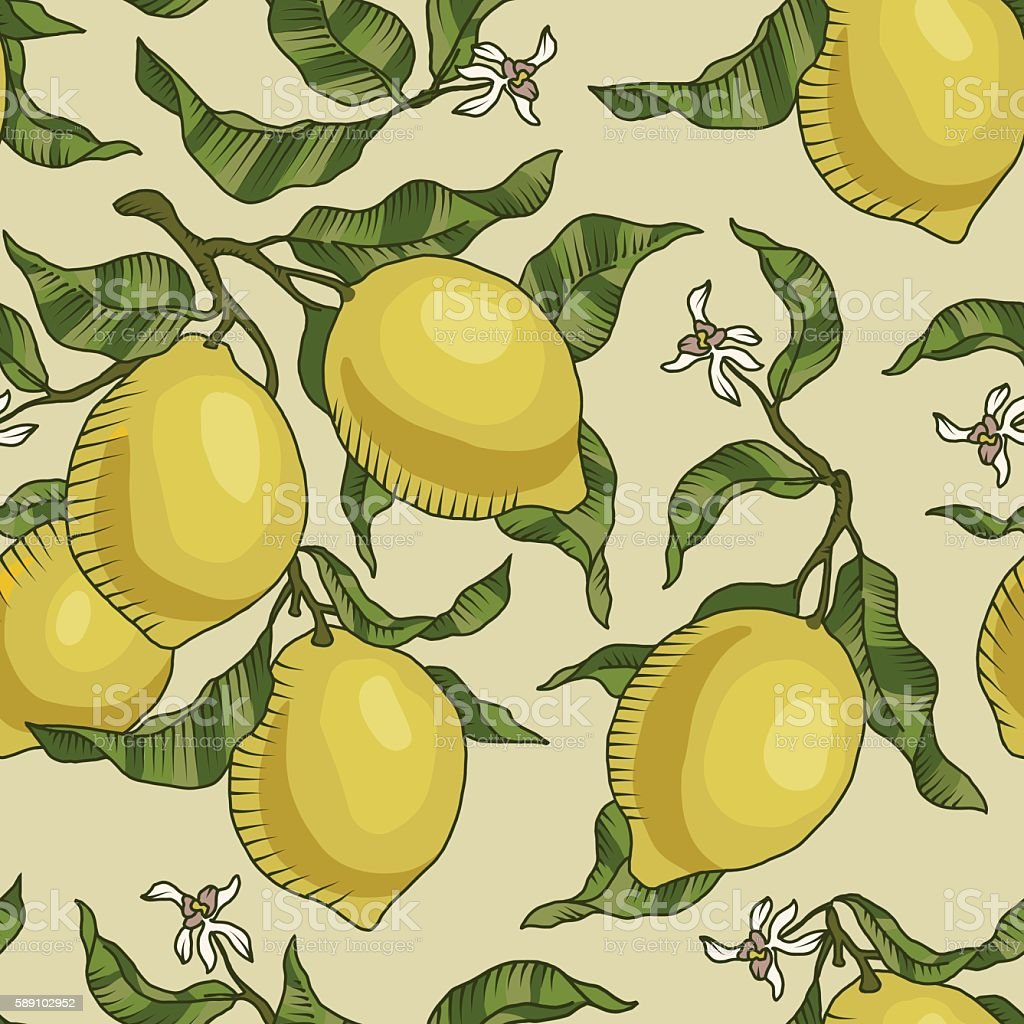 Vector pattern with lemon branches. vector art illustration