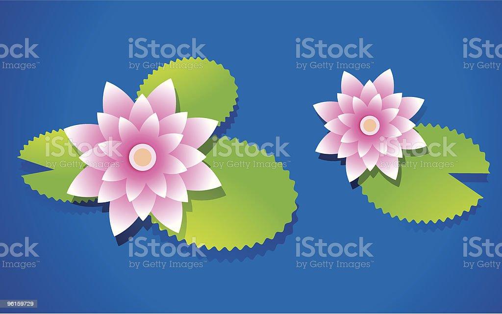 Vector Pink Lotus vector art illustration