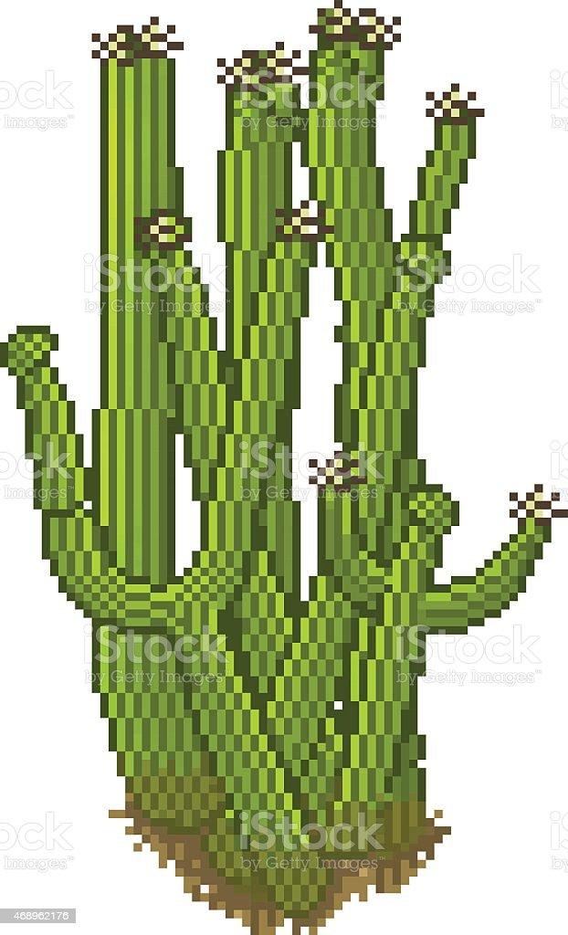 Vector pixel style cactus vector art illustration