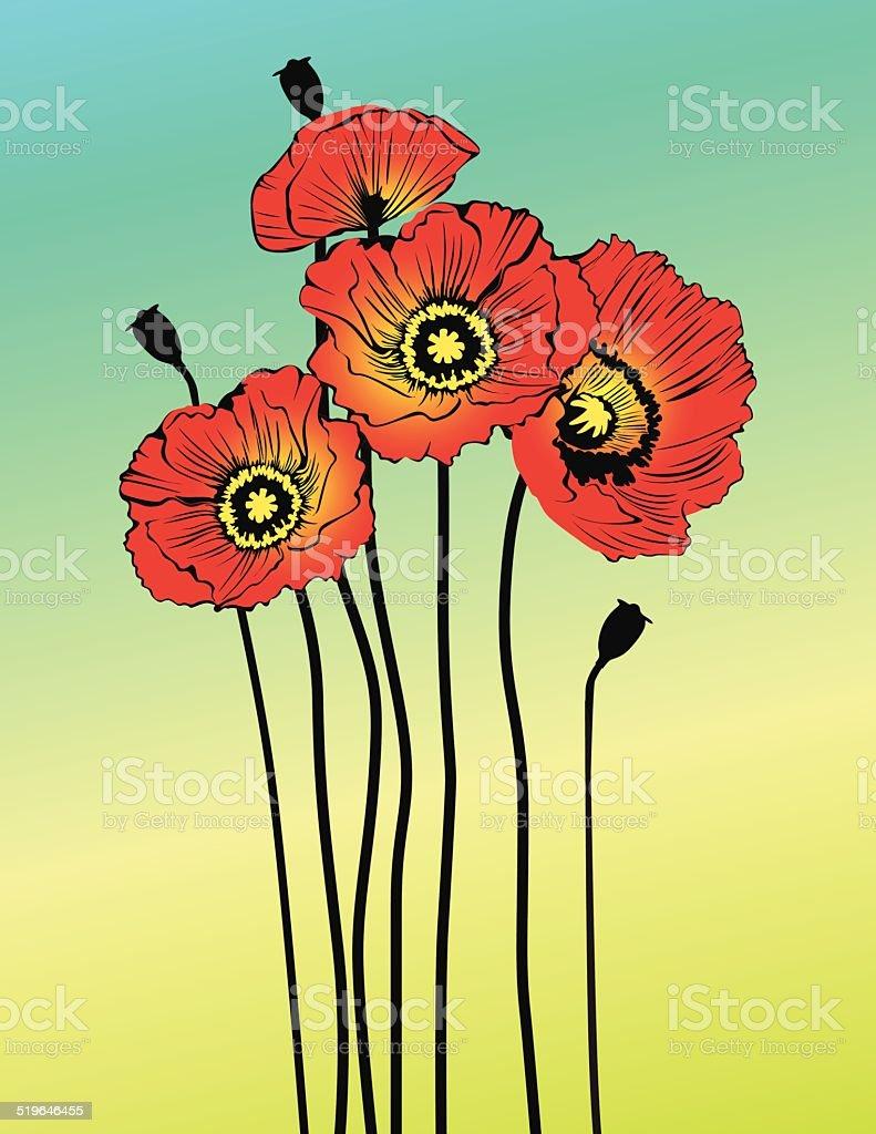 Vector poppy spring flowers vector art illustration