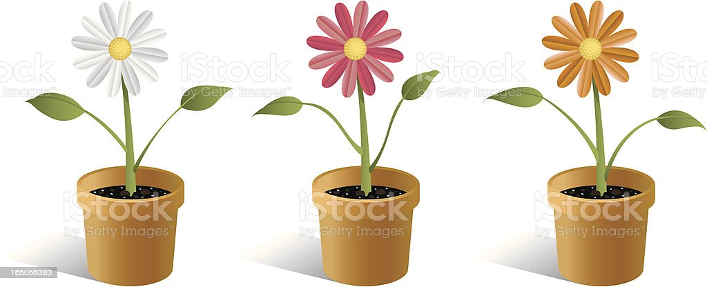 Vector Potted Flowers vector art illustration