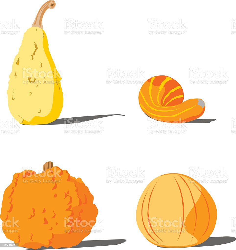 Vector pumpkins vector art illustration